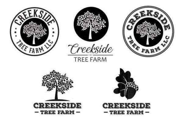 Logo Design by Julie Burgess Web Design