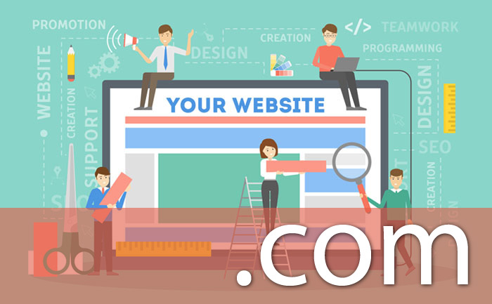 Domain Registration and Web Site Hosting Setup